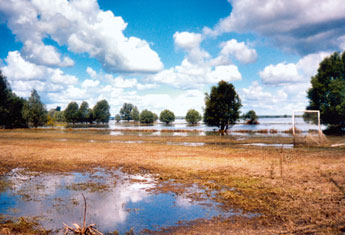 Sonnenburg im Juni 2010: Hochwasser auf den Schlosswiesen Foto: Schilling